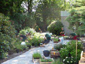 Beetbepflanzung mit Fa. Mecke