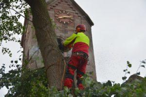 Duderstadt Renshausen Sturmgeschädigte Linden vor der Kirche werden beseitigt. Momme Selck
