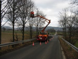 Baumfällung mit Ampelanlage zur Verkehrssicherung